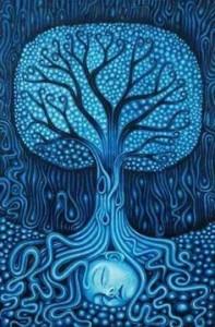 lacul albastru al vindecarii ana-maria-stefanescu