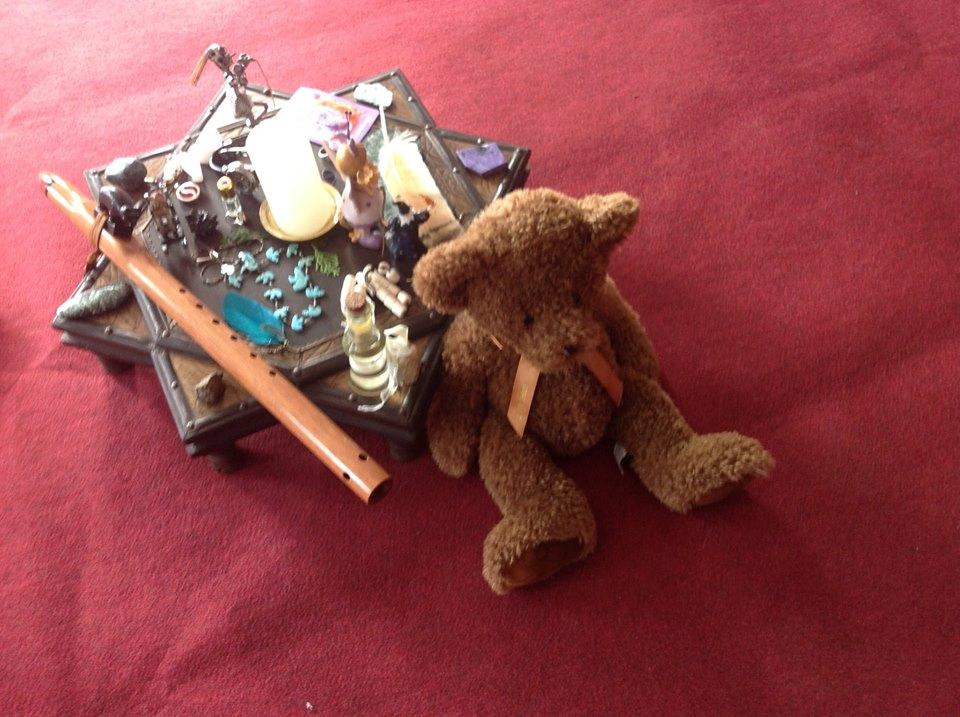 dreaming with the bear drumulsprecentru.ro